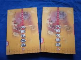 大般涅槃经(上下)——中国佛学经典文库