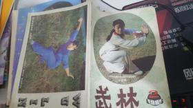 武林 1985 2