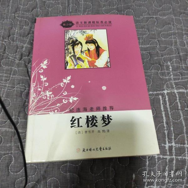 红楼梦-语文新课程标准必读-导读版