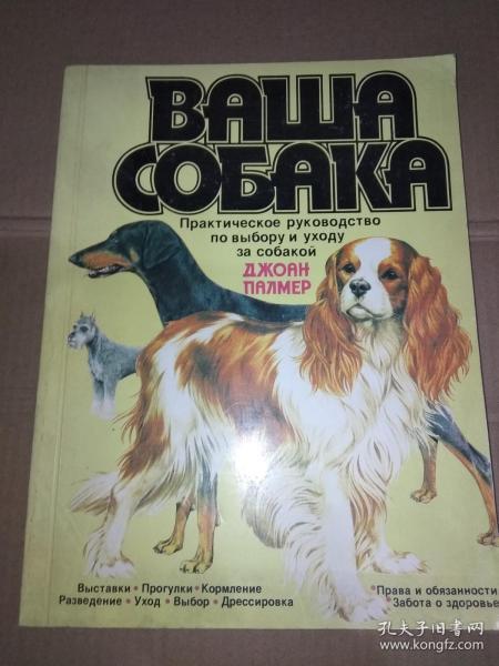 俄文原版:ВАША СОБАКА