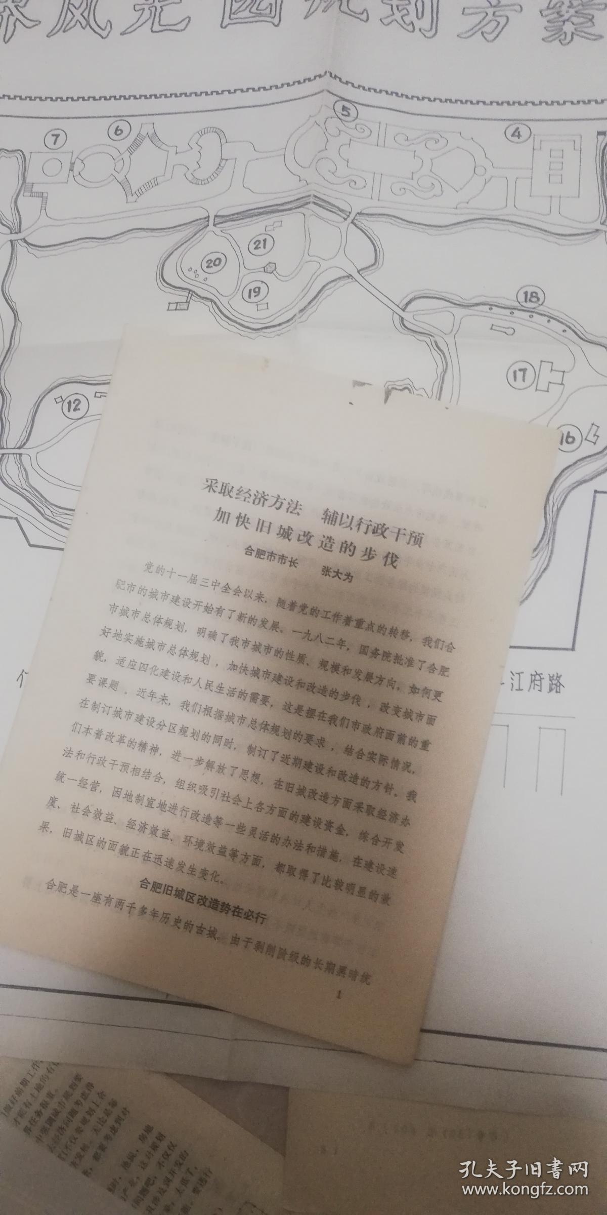合肥市长张大为《经济方法加快旧城改造》19页码