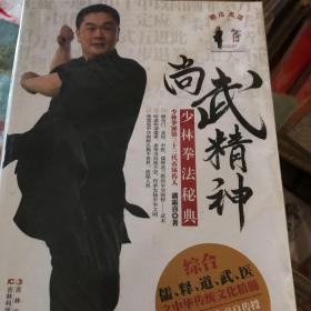 尚武精神:少林拳法秘典