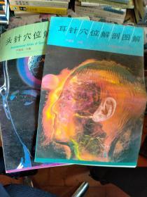 耳针穴位解剖图解、头针穴位解剖图解,两本合售