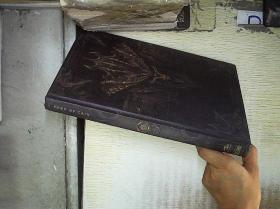 DIABLO : BOOK OF CAIN   (05)