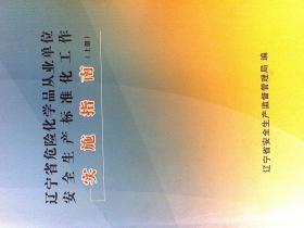 辽宁省危险化学品从业单位安全生产标准化工作实施指南  上下