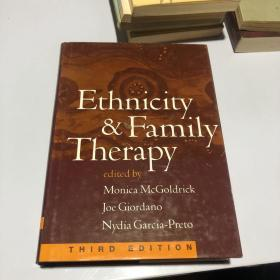 ethnicity family therapy