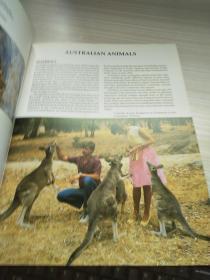 AUSTRALIA\S ANIMALS