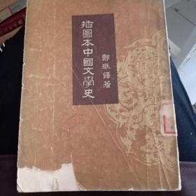 《插图本中国文学史》