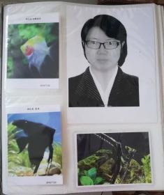 7,8寸一本装 相册影集插页式家庭相册本纪念册
