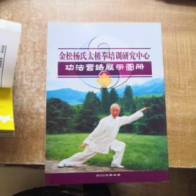 金松杨氏太极拳培训研究中心功法套路展示图册(二)