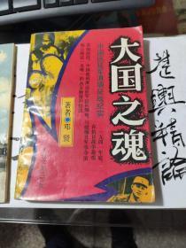 大国之魂----中国远征军滇缅征战纪实