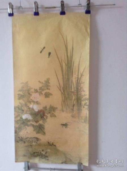 蜻蜓 青蛙  彩色国画印刷品 货号18
