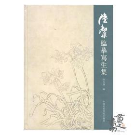 陆抑非临摹写生集 中国美术学院出版社