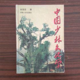 中国少林文化学