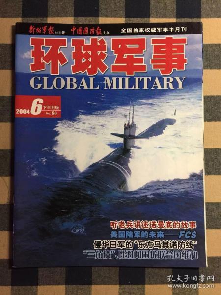 环球军事 2004年6月下 总80