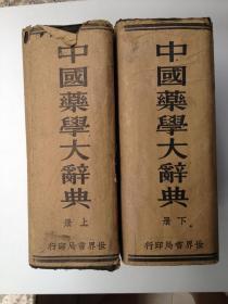 中国药学大辞典(上下册 精装 民国二十四年版)