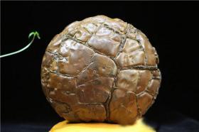 """陨石奇石原石,极为罕见,顶级陨石,陨石,天降""""珍宝""""的陨石,""""足球陨石""""难得一见,""""龟纹陨石原石""""非常少见,非常难得,大块头21.6斤,可遇不可求的天降奇石陨石值得永久收藏"""