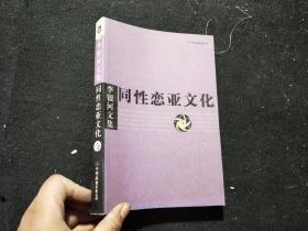 同性恋亚文化:李银河文集