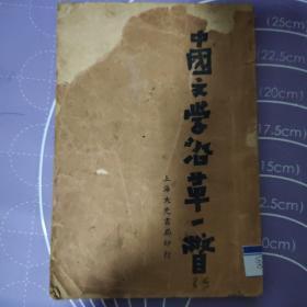 中国文学沿革一瞥