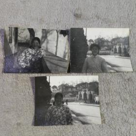 老照片 3张