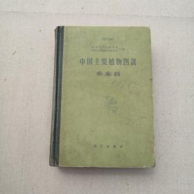 中国主要植物图说 禾本科