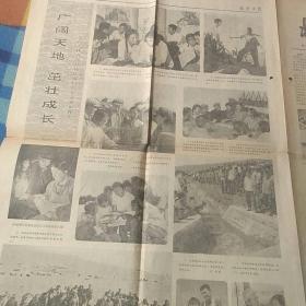 老报纸1973年7月14日