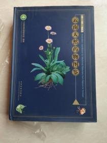 云南天然药物图鉴(第三卷)