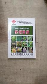 蔬菜果树病虫害诊断与防治原创图谱。(铜版彩印)