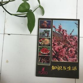 知识与生活创刊号