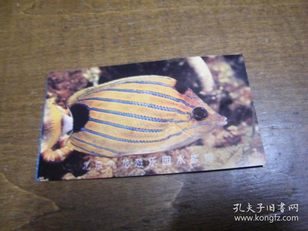 门票:北京九龙游乐园水族馆