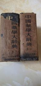 中国药学大辞典(上下册全)