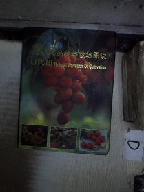 荔枝品种与栽培图说