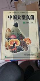 中国大型真菌 库存新书