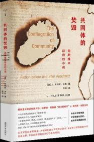 守望者·镜与灯:共同体的焚毁奥斯维辛前后的小说
