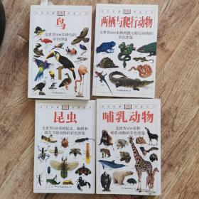 自然珍藏DK图鉴图书:鸟,两栖爬行,昆虫,哺乳动物