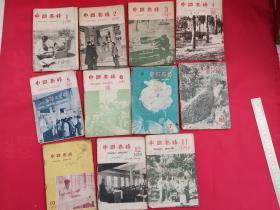 中国养蜂1959年第1-12期(缺第9期,共11本合售)