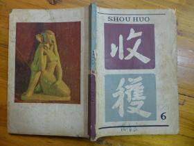 收获1981年第6期·张辛欣的《在同一地平线上》叶文玲的《小溪九道弯》丁聪为《宝姑》插图、邓友梅的《别了濑户内海》肖于的《融雪》冰心的《我到了北京》叶圣陶的《内蒙日记》