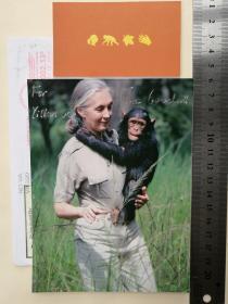 """世界上最著名的动物学家、生物学家、20世纪最伟大的人物之一、世界级模范科学研究者、奔走的""""特蕾莎修女""""、最懂黑猩猩的人、联合国和平大使、马丁·路德·金反暴力奖、泰勒环境贡献奖、大英百科全书奖获得者、世界上拥有极高声誉的动物学家、珍妮·古道尔(Jane Goodall)、亲笔签名、照片1张(签赠友人、珍贵、罕见)"""
