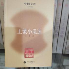 王蒙小说选