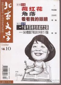 北京文学2002年上半年.第10期