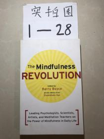 The Mindfulness Revolution  Leading Psychologist