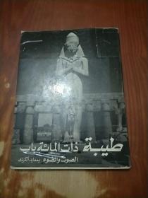阿拉伯文图书 1