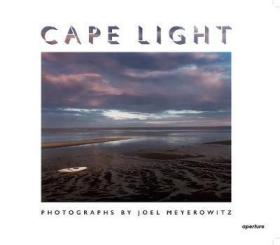 Cape Light: Joel Meyerowitz 海角之光:乔尔 ·迈耶罗维茨