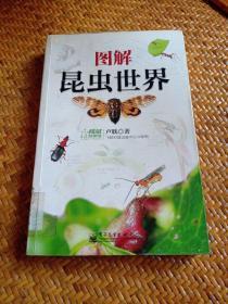 图解昆虫世界