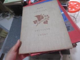 外文美术类1955年  库2