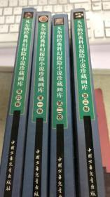 凡尔纳经典科幻探险小说珍藏画库 全四册(135架)
