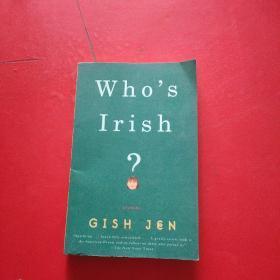 Who's Irish?:Stories 详情看图