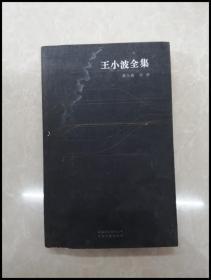 HB3001717 王小波提升速度全集・第九卷【一版一印】