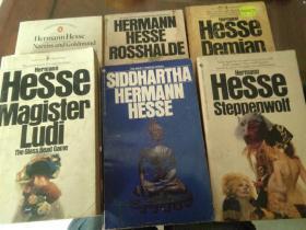 steppenwolf ,demian,siddhartha,magister ludi,rosshalde。  诺贝尔文学奖得主赫尔曼.黑塞作品集五本合售  荒原狼,德米安,悉达多,玻璃球游戏,罗斯哈尔德。