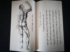 钦定骼体全录 西医人身骨脉图说 清朝 满族 满文 满语